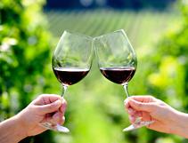 Weinfahrten